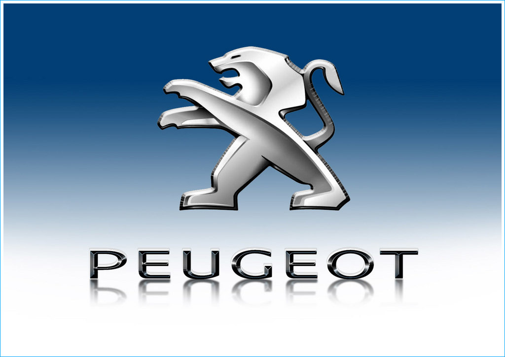PEUGEOT - Saint Pierre du Perray